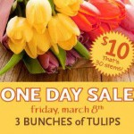 One-day Sale on Whole Foods Tulips: $10 for 30 Stems