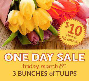 whole foods tulips
